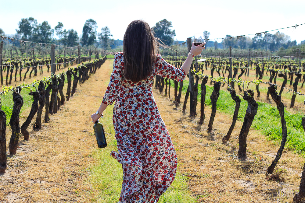 villa matilde vini